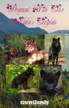 Pregnant With The Alpha's Triplets - Whoops part 2 - Wattpad