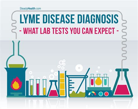 Lyme Disease Diagnosis: What Lab Tests You Can Expect