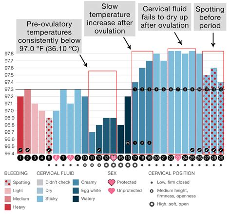 Decipher your cycle with these sample Groove charts