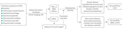 Management of ANCA associated vasculitis   The BMJ
