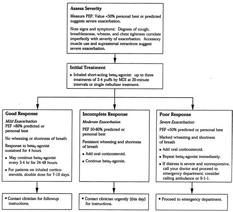 Moderate Persistent Asthma With Acute Exacerbation