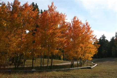 9 Wyoming Day Trips For Fall