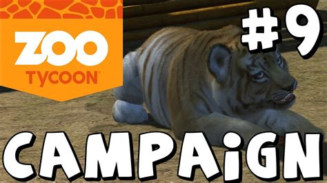 Zoo Tycoon: Xbox One - Wild Ambitions - Campaign Mode